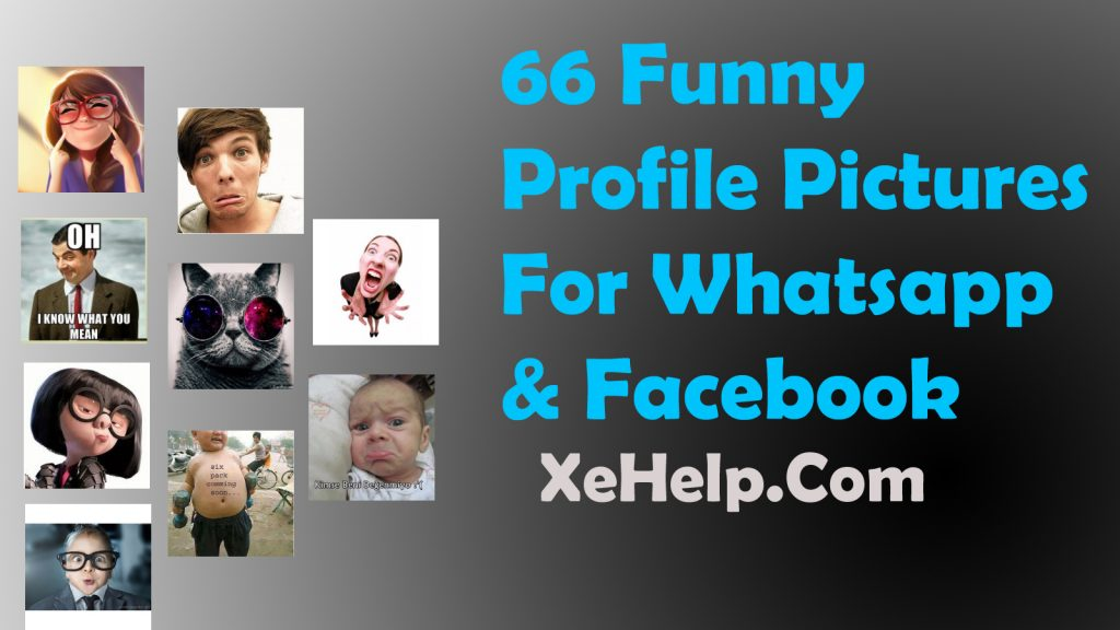 66 Funny Profile Pictures For Whatsapp & Facebook | XeHelp